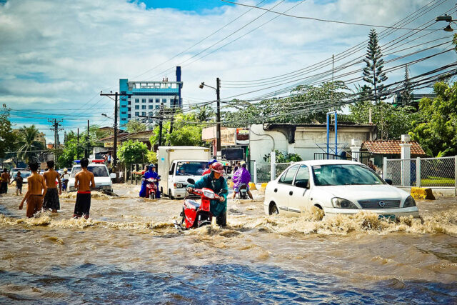 How to Pave the Road for Resilient Cities?